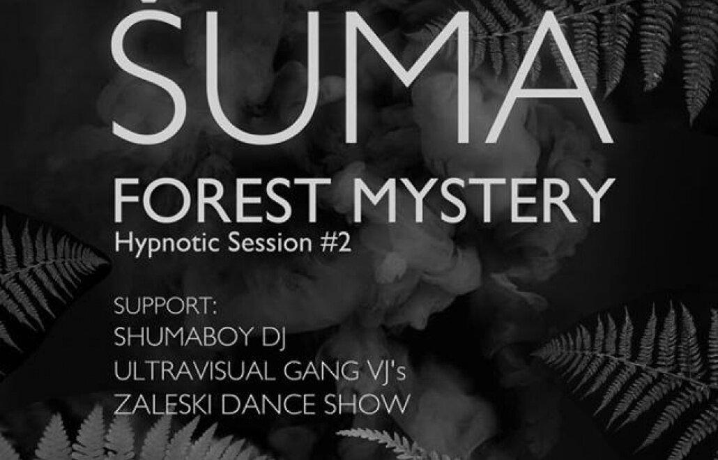 концерт Shuma forest mystery